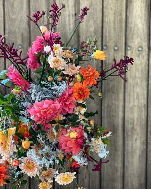 Stunning flowers from southern highlands