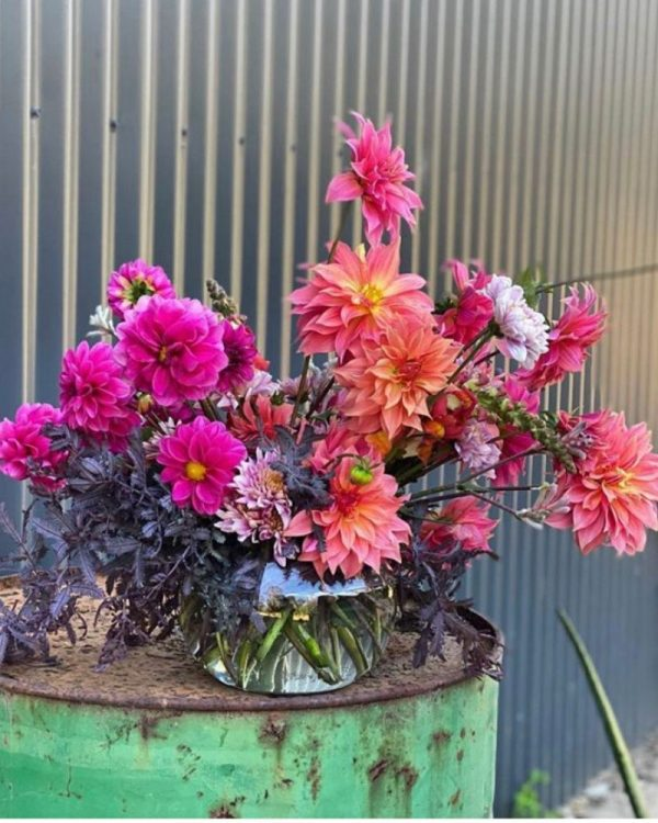bright and bold blooms from Jonima Flowers
