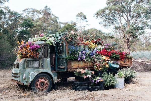 Jonima Flowers Delivery Truck
