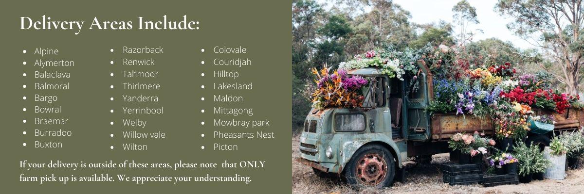 Jonima Flowers Farm Pick Up